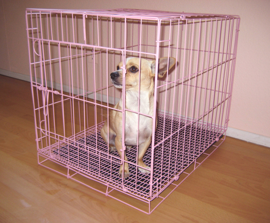 Pink Wire Dog Cage/Crate